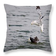 Angry Gull Throw Pillow