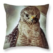 Angry Hawk Throw Pillow