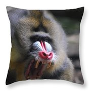 Angry Mandrill Monkey Throw Pillow