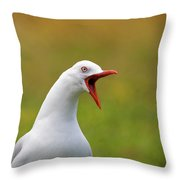 Angry Red Billed Gull Throw Pillow
