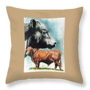 Angus Cattle Throw Pillow