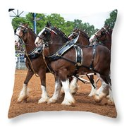Anheuser Busch Budweiser Clydesdale Horses In Harness Usa Rodeo Throw Pillow