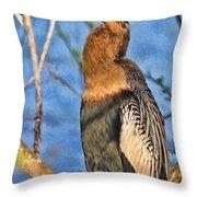 Anhinga At The Pond Throw Pillow