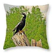 Anhinga Bird On Stump Throw Pillow