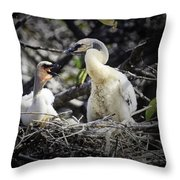 Anhinga Chicks Throw Pillow