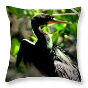 Anhinga Throw Pillow