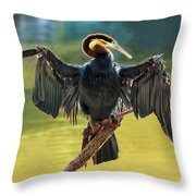 Anhinga Drying His Wings Throw Pillow