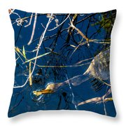 Anhinga Everglades Throw Pillow