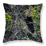 Anhinga In Brush Throw Pillow