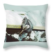 Anhinga Or Snakebird Throw Pillow
