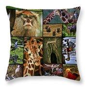 Animal Collage Throw Pillow