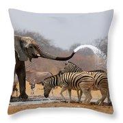 Animal Humour Throw Pillow by Johan Swanepoel