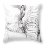 Animal Kingdom Series - Gentle Giant Throw Pillow