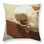 Animal Skull Mantel 1 12 2011 Throw Pillow