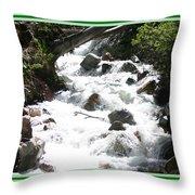 Animas River Southern Colorado Throw Pillow