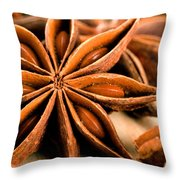 Anis Star Throw Pillow
