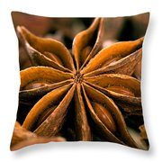 Anise Star Throw Pillow
