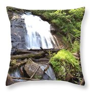Anna Ruby Falls - Georgia - 4 Throw Pillow