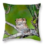Annas Hummingbird Nest Throw Pillow