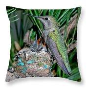 Annas Hummingbird With Young Throw Pillow
