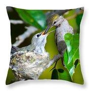 Annas Hummingbirds At Nest Throw Pillow