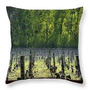 Anne Amie Vineyard 23126 Throw Pillow