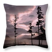 Anniversary Afternoon Throw Pillow
