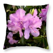Announcing Spring Throw Pillow