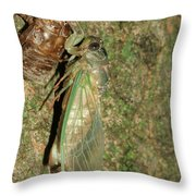 Annual Cicada Throw Pillow