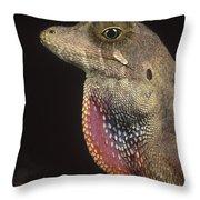 Anolis Lizard Portrait Peru Throw Pillow