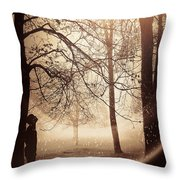 Anomaly Throw Pillow by Svetlana Sewell