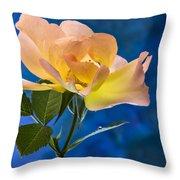 Another Beautiful Rose Throw Pillow