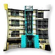 Another Blue Crane  Throw Pillow