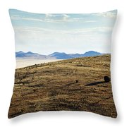 Another Color View Of West Texas Throw Pillow