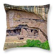 Another Dwelling On Chapin Mesa In Mesa Verde National Park-colorado  Throw Pillow