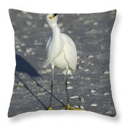 Another Flying Fish Throw Pillow