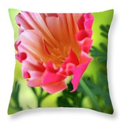 Another Glimpse Throw Pillow by Heidi Smith
