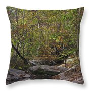 Another Peaceful Afternoon Throw Pillow