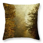Another Road Travelled Throw Pillow