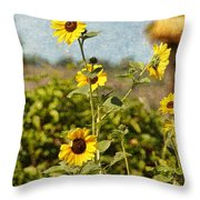 Another Sunny Day In Socal Throw Pillow