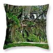 Savannah National Wildlife Refuge Throw Pillow