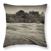 Another View Of Seven Throw Pillow