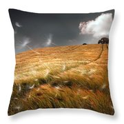 Another Windy Day Throw Pillow