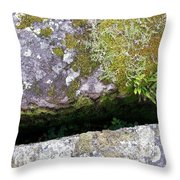 Another World Series 8 Throw Pillow