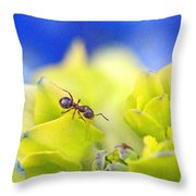 Ant And Hydrandea Throw Pillow
