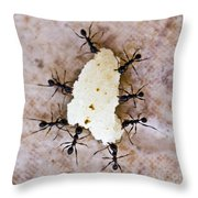 Ant Joint Venture Throw Pillow