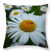Ant Nothing Sweeter Than My Little Daisy Throw Pillow