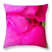 Ant On Pink Petals Throw Pillow