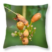 Ant On Plant Throw Pillow