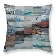 Antarctic Mosaic Throw Pillow